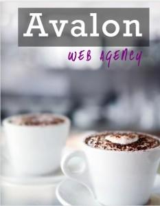 Logiciel de veille AUTOVEILLE entretien avec Agence web Avalon