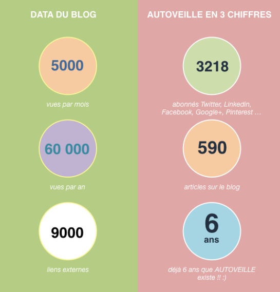 infographie-donnees-data-blog-seo-autoveille