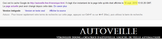 indexation-page-amp-autoveille