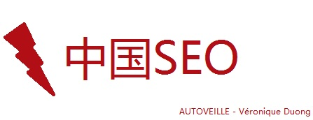 chinese-seo-autoveille-veronique-duong